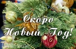 новогодние товары от «Скарбницы»