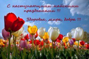 С наступающими майскими праздниками!